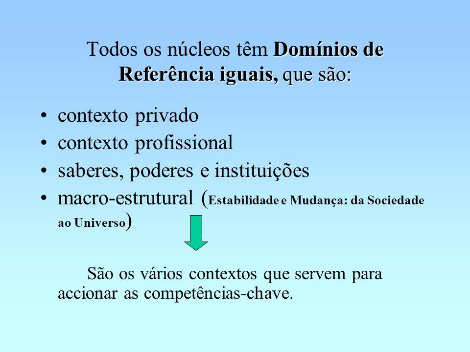 Domínios de Referência iguais, que são: Todos os núcleos têm Domínios de Referência iguais, que são: contexto privado contexto profissional saberes, poderes e instituições macro-estrutural ( Estabilidade e Mudança: da Sociedade ao Universo ) São os vários contextos que servem para accionar as competências-chave.