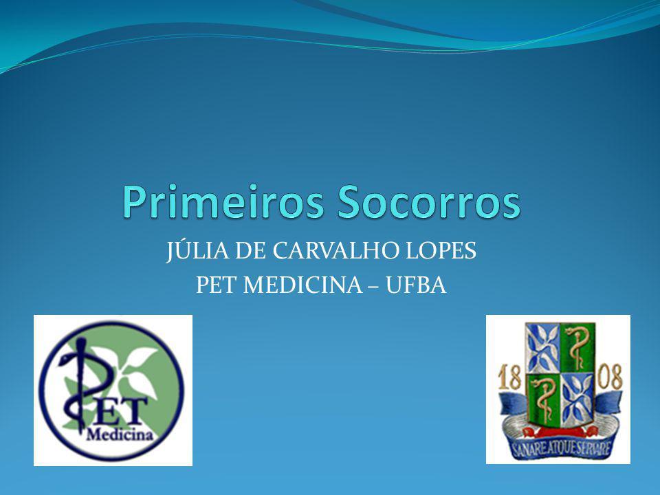 JÚLIA DE CARVALHO LOPES PET MEDICINA – UFBA