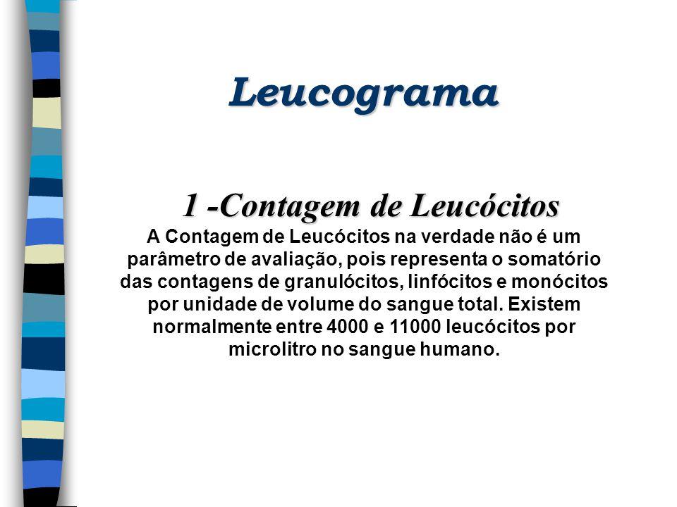 Leucograma 1 -Contagem de Leucócitos A Contagem de Leucócitos na verdade não é um parâmetro de avaliação, pois representa o somatório das contagens de