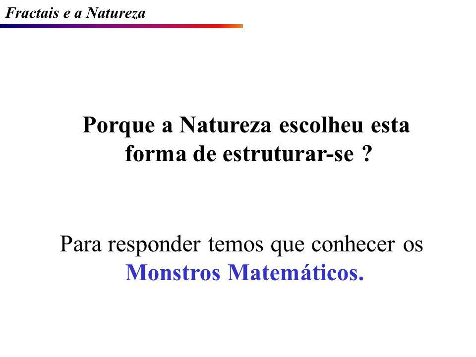 Fractais e a Natureza Porque a Natureza escolheu esta forma de estruturar-se .