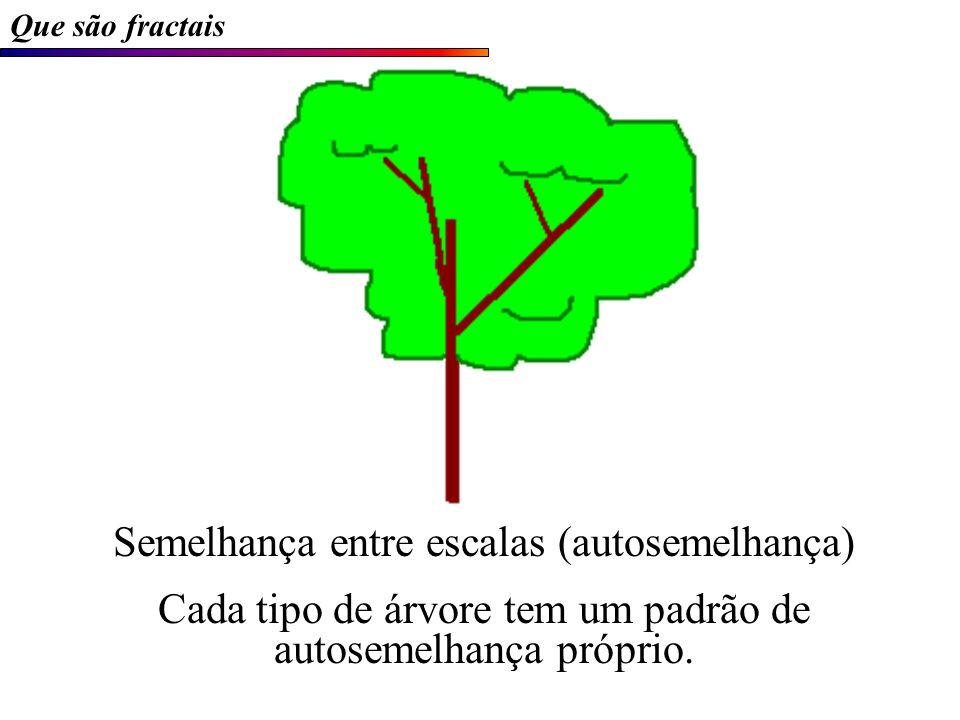 Semelhança entre escalas (autosemelhança) Cada tipo de árvore tem um padrão de autosemelhança próprio.