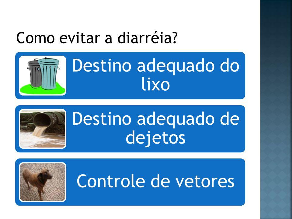 Destino adequado do lixo Destino adequado de dejetos Controle de vetores