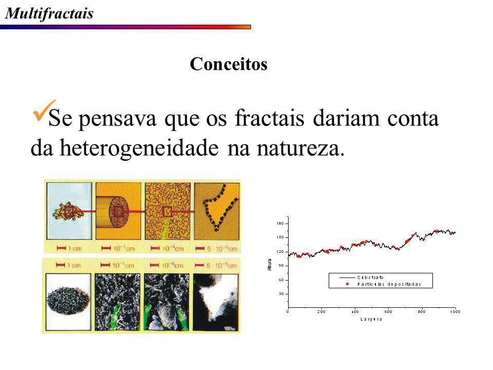 Multifractais Se pensava que os fractais dariam conta da heterogeneidade na natureza. Conceitos