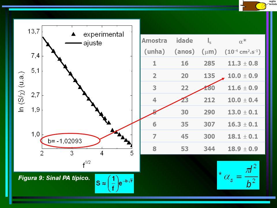 Amostra (unha) idade (anos) l s ( m) * (10 -4 cm 2.s -1 ) 11628511.3 0.8 22013510.0 0.9 32218011.6 0.9 42321210.0 0.4 53029013.0 0.1 63530716.3 0.1 74