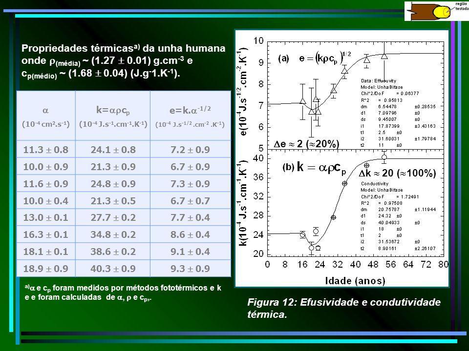(10 -4 cm 2.s -1 ) k= c p (10 -4 J.s -1.cm -1.K -1 ) e=k. -1/2 (10 -4 J.s -1/2.cm -2.K -1 ) 11.3 0.824.1 0.87.2 0.9 10.0 0.921.3 0.96.7 0.9 11.6 0.924