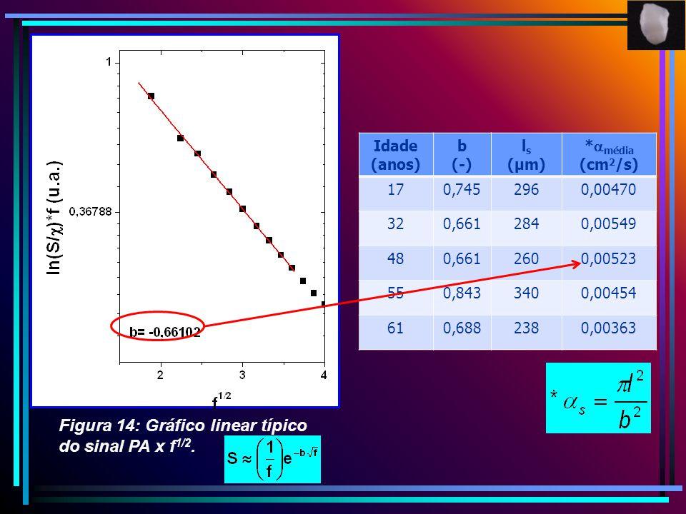 Figura 14: Gráfico linear típico do sinal PA x f 1/2. Idade (anos) b (-) l s (µm) * média (cm 2 /s) 170,7452960,00470 320,6612840,00549 480,6612600,00