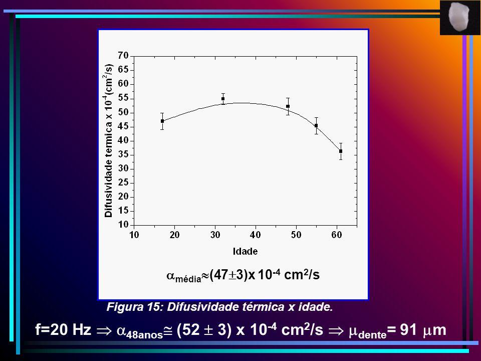 média (47 3)x 10 -4 cm 2 /s f=20 Hz 48anos (52 3) x 10 -4 cm 2 /s dente = 91 m Figura 15: Difusividade térmica x idade.