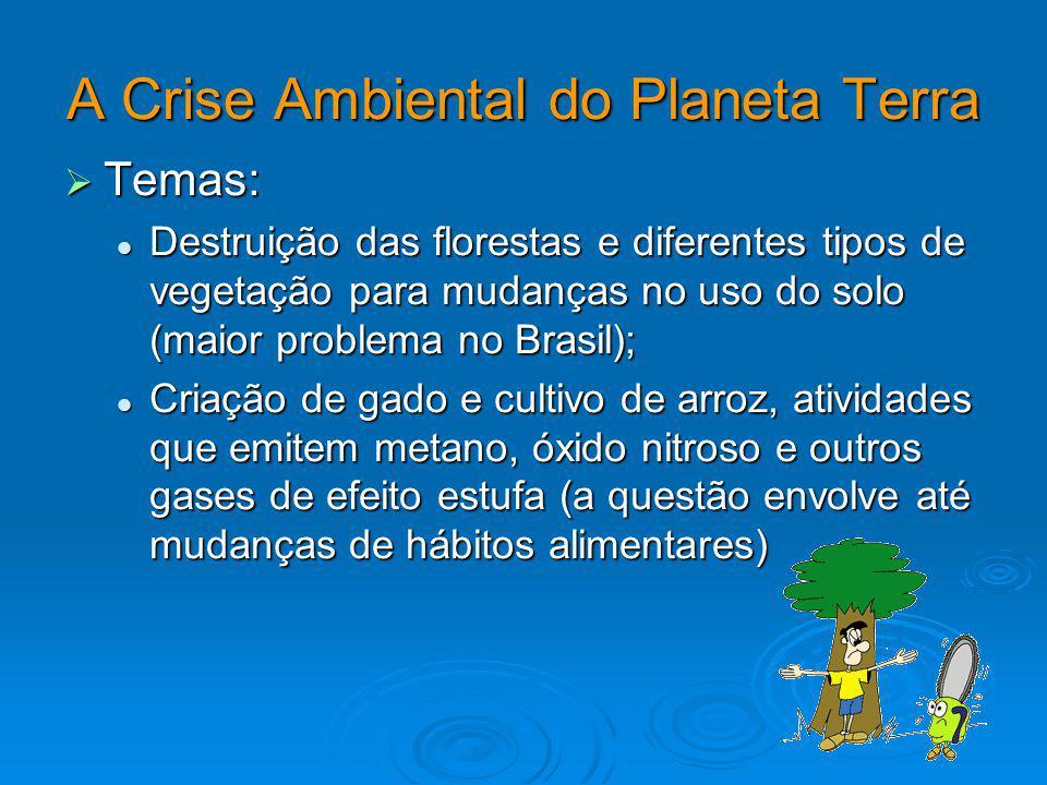 A Crise Ambiental do Planeta Terra Temas: Temas: Destruição das florestas e diferentes tipos de vegetação para mudanças no uso do solo (maior problema