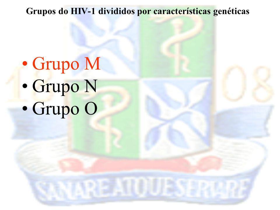 Grupo M Grupo N Grupo O Grupos do HIV-1 divididos por características genéticas
