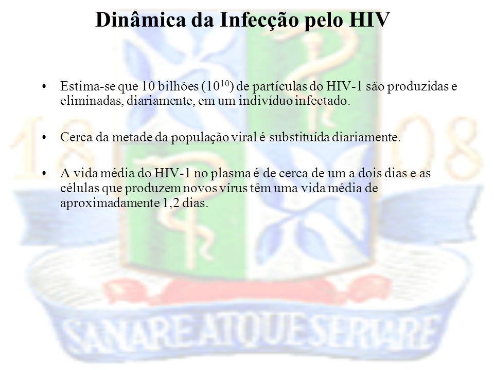 Estima-se que 10 bilhões (10 10 ) de partículas do HIV-1 são produzidas e eliminadas, diariamente, em um indivíduo infectado. Cerca da metade da popul