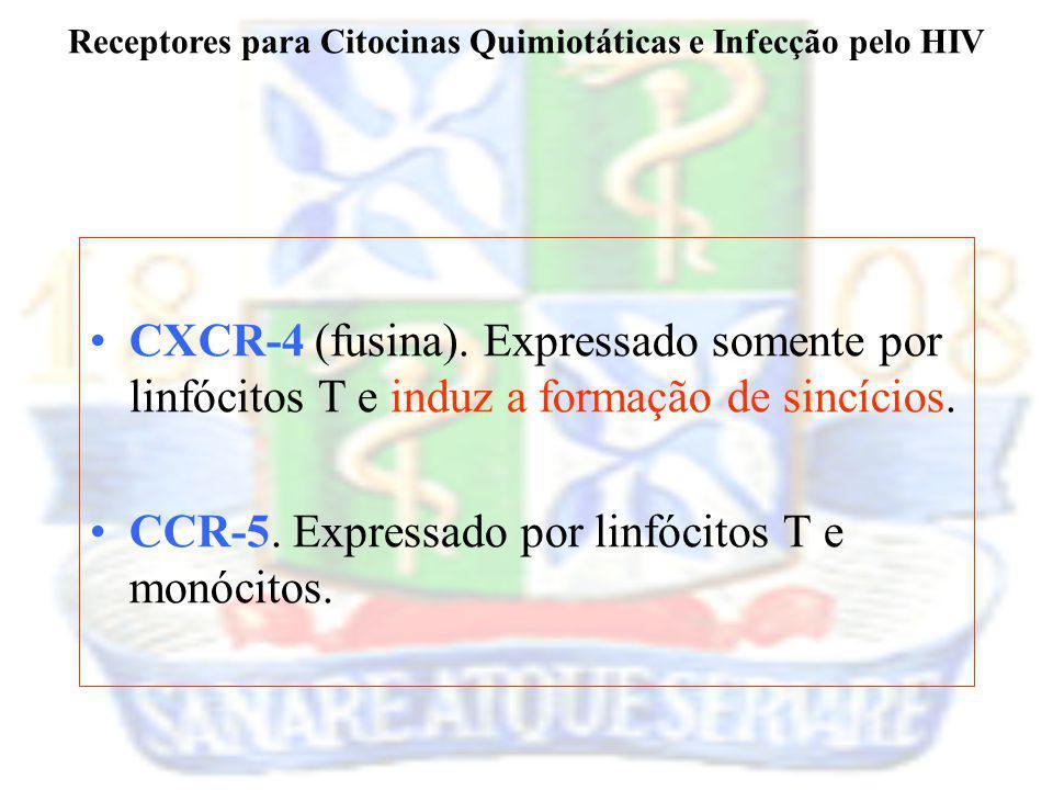 CXCR-4 (fusina). Expressado somente por linfócitos T e induz a formação de sincícios. CCR-5. Expressado por linfócitos T e monócitos. Receptores para