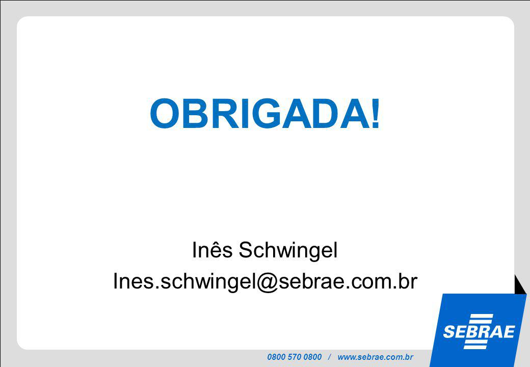 0800 570 0800 / www.sebrae.com.br OBRIGADA! Inês Schwingel Ines.schwingel@sebrae.com.br
