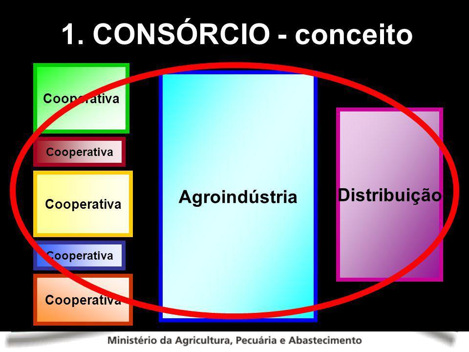 Cooperativa Agroindústria Distribuição Cooperativa 1. CONSÓRCIO - conceito