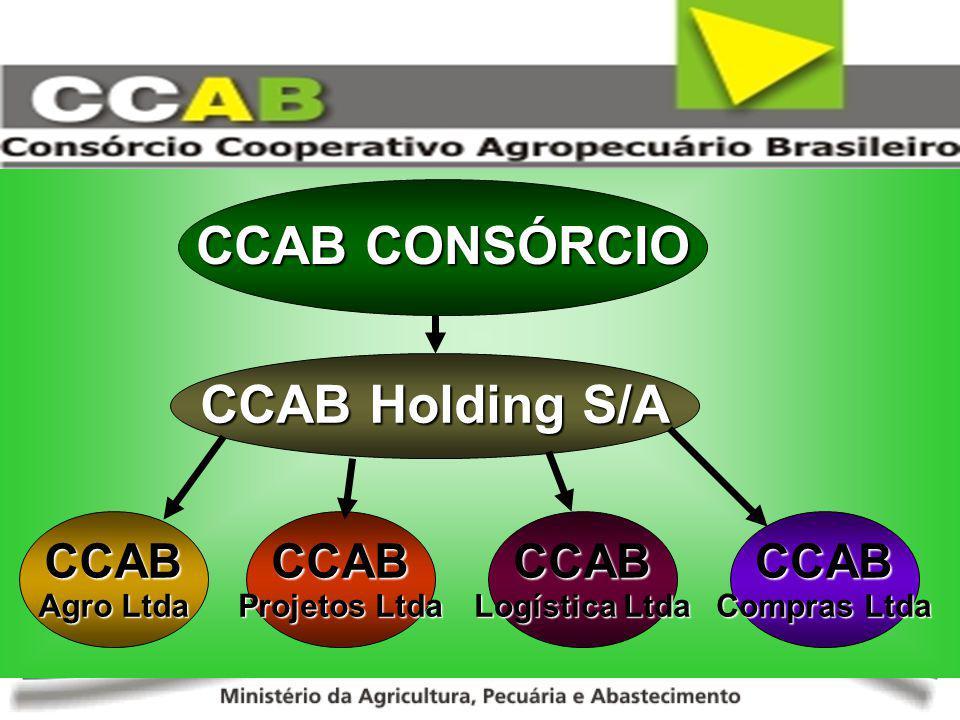 CCAB Holding S/A CCAB Projetos Ltda CCAB Agro Ltda CCAB Logística Ltda CCAB Compras Ltda CCAB CONSÓRCIO