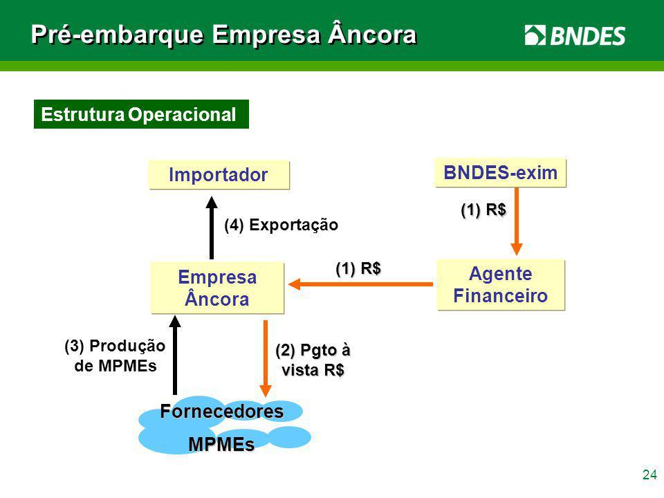 24 Agente Financeiro (4) Exportação (3) Produção de MPMEs Empresa Âncora (1) R$ (1) R$ BNDES-exim FornecedoresMPMEs (2) Pgto à vista R$ Importador (1)