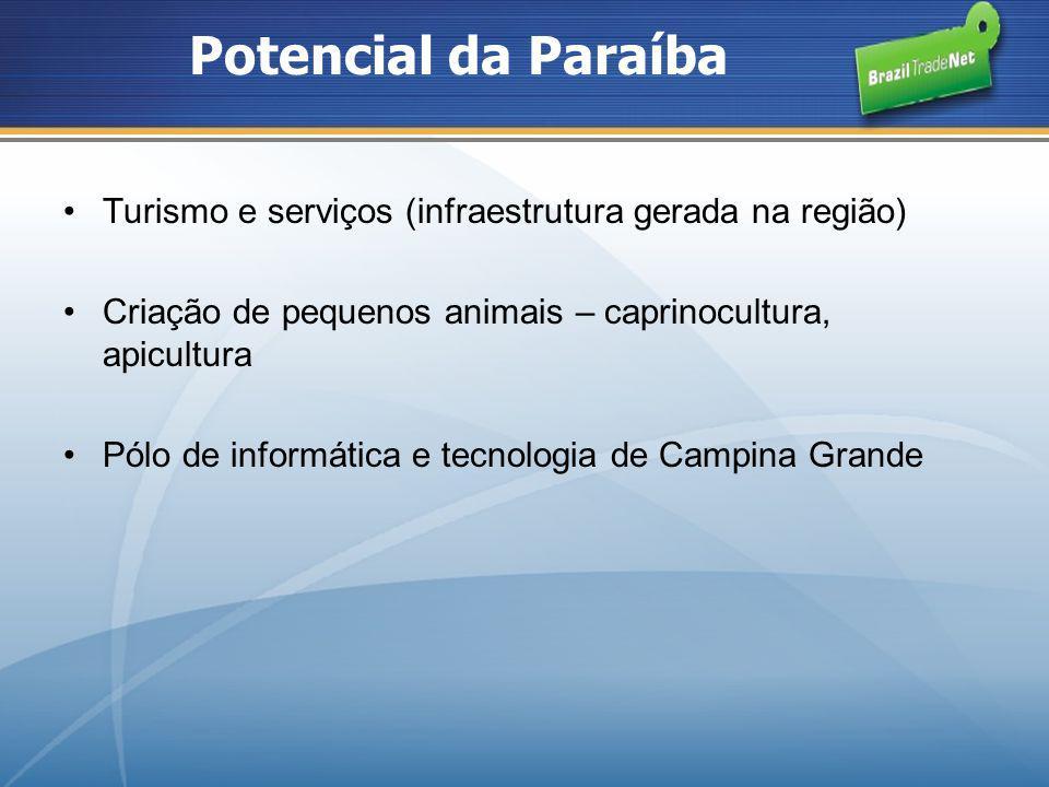 Potencial da Paraíba Turismo e serviços (infraestrutura gerada na região) Criação de pequenos animais – caprinocultura, apicultura Pólo de informática