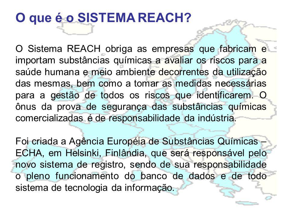O que é o SISTEMA REACH.