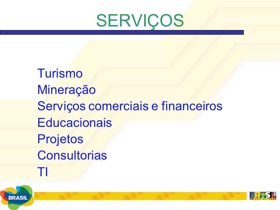 SERVIÇOS Turismo Mineração Serviços comerciais e financeiros Educacionais Projetos Consultorias TI