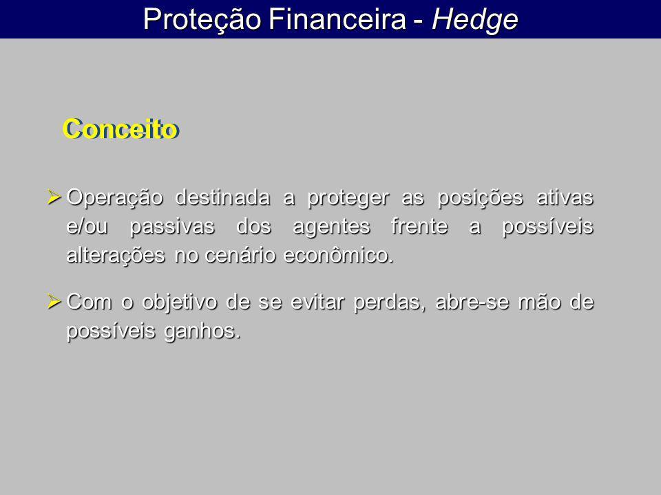 Proteção Financeira - Hedge Operação destinada a proteger as posições ativas e/ou passivas dos agentes frente a possíveis alterações no cenário econôm