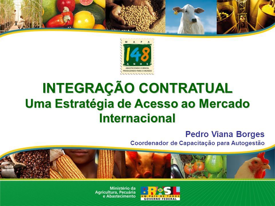 INTEGRAÇÃO CONTRATUAL Uma Estratégia de Acesso ao Mercado Internacional Pedro Viana Borges Coordenador de Capacitação para Autogestão