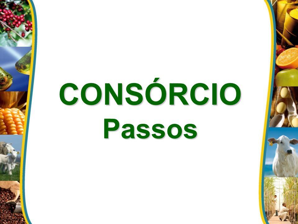 CONSÓRCIOPassos