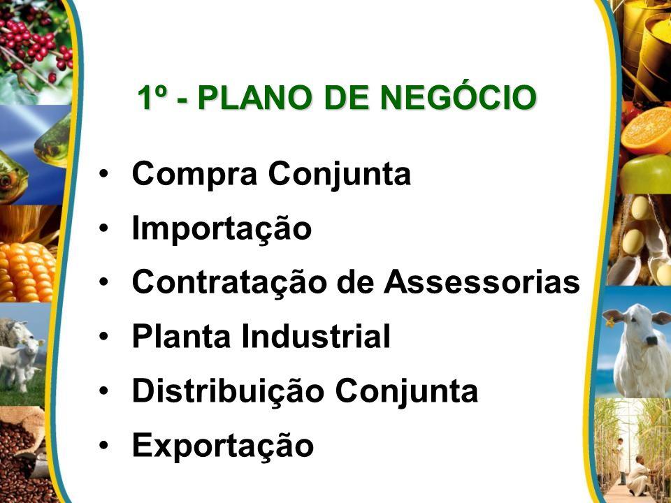 Compra Conjunta Importação Contratação de Assessorias Planta Industrial Distribuição Conjunta Exportação 1º - PLANO DE NEGÓCIO