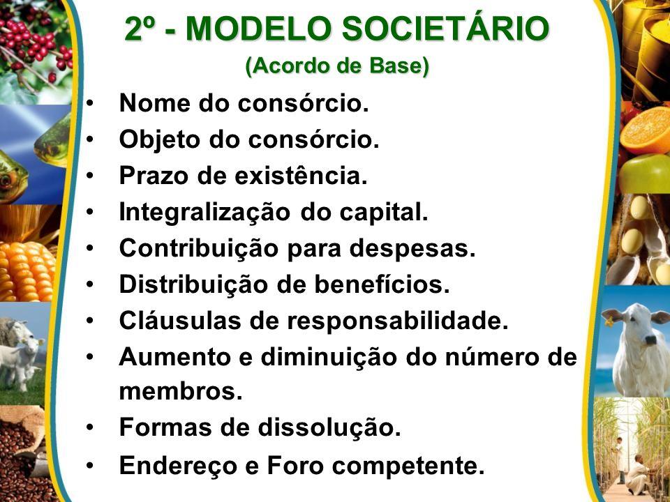 2º - MODELO SOCIETÁRIO (Acordo de Base) Nome do consórcio. Objeto do consórcio. Prazo de existência. Integralização do capital. Contribuição para desp