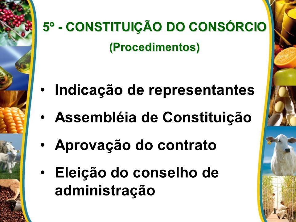 5º - CONSTITUIÇÃO DO CONSÓRCIO (Procedimentos) Indicação de representantes Assembléia de Constituição Aprovação do contrato Eleição do conselho de administração