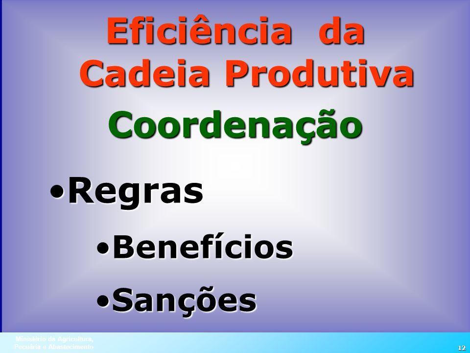 Ministério da Agricultura, Pecuária e Abastecimento 12 Eficiência da Cadeia Produtiva Coordenação RegrasRegras BenefíciosBenefícios SançõesSanções