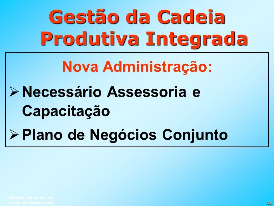 Ministério da Agricultura, Pecuária e Abastecimento 13 Gestão da Cadeia Produtiva Integrada Nova Administração: Necessário Assessoria e Capacitação Pl