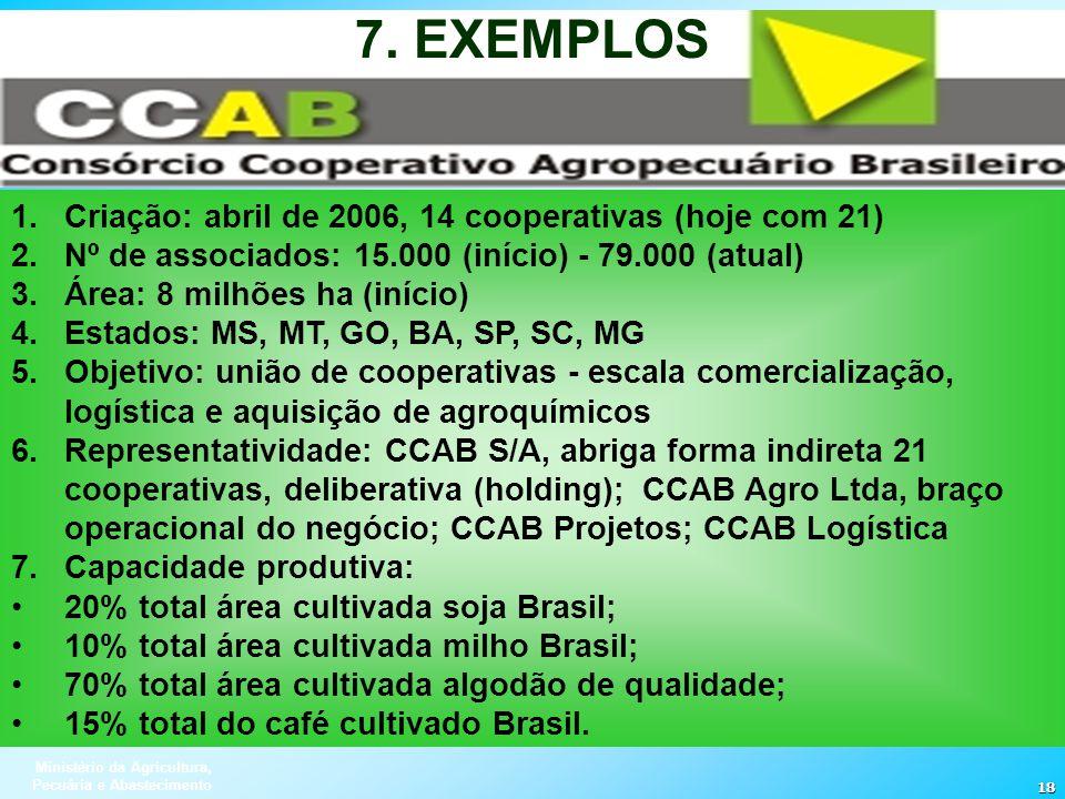 Ministério da Agricultura, Pecuária e Abastecimento 18 1.Criação: abril de 2006, 14 cooperativas (hoje com 21) 2.Nº de associados: 15.000 (início) - 7