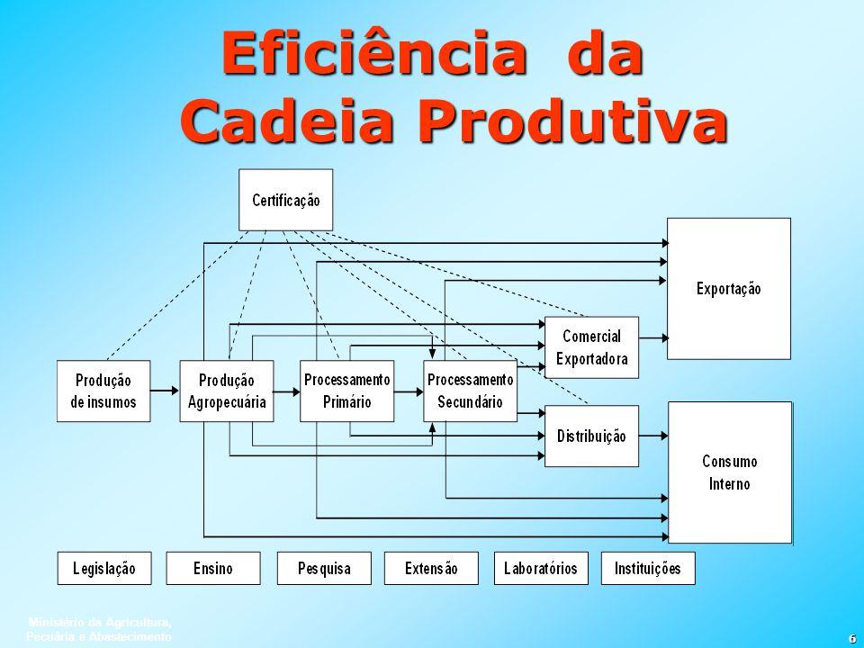 Ministério da Agricultura, Pecuária e Abastecimento 6 Eficiência da Cadeia Produtiva