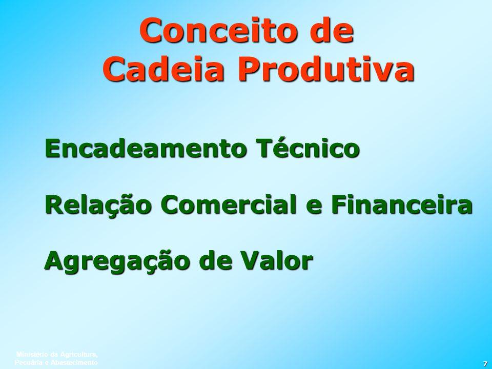 Ministério da Agricultura, Pecuária e Abastecimento 7 Conceito de Cadeia Produtiva Encadeamento Técnico Relação Comercial e Financeira Agregação de Va