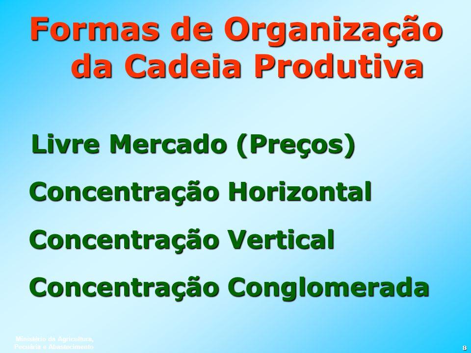 Ministério da Agricultura, Pecuária e Abastecimento 8 Formas de Organização da Cadeia Produtiva Livre Mercado (Preços) Concentração Horizontal Concent