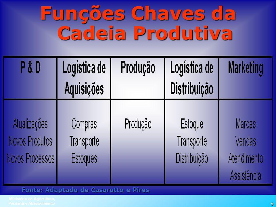 Ministério da Agricultura, Pecuária e Abastecimento 9 Funções Chaves da Cadeia Produtiva Fonte: Adaptado de Casarotto e Pires