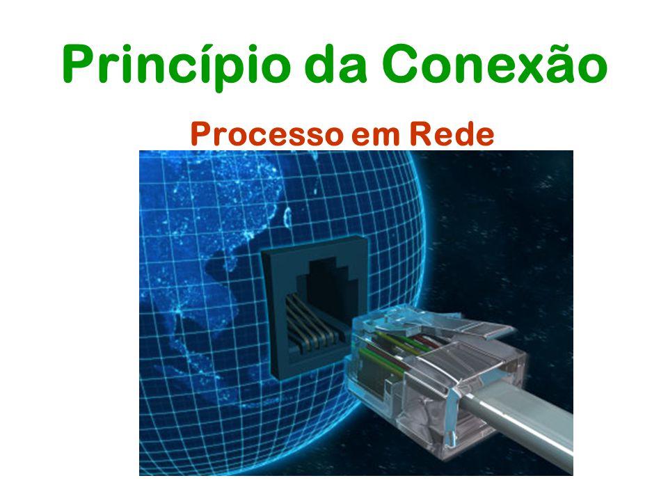 Princípio da Conexão Processo em Rede