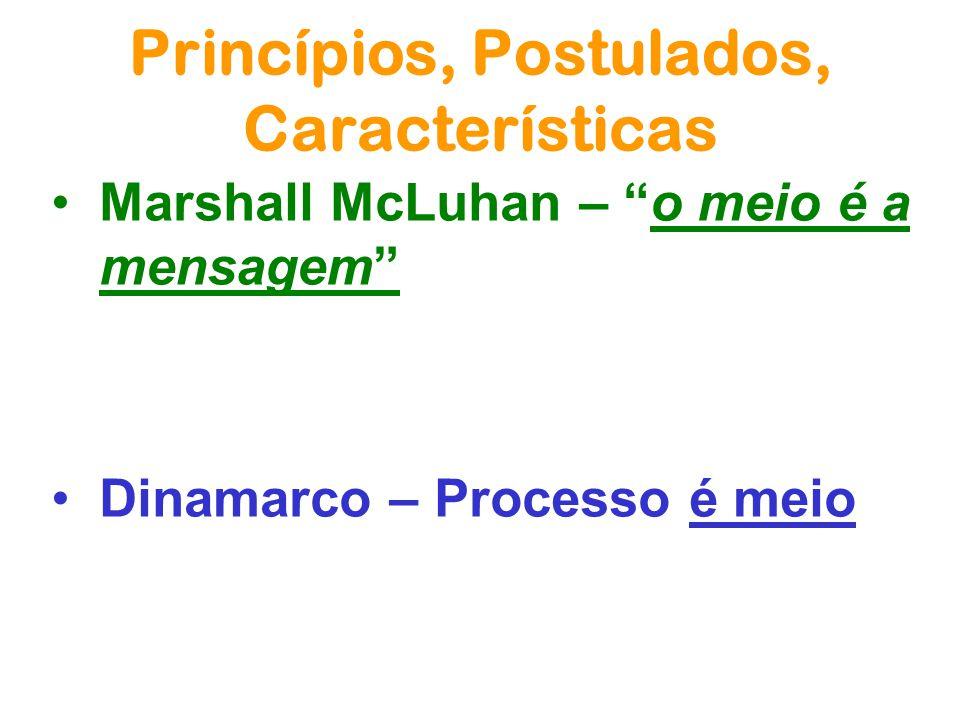Princípios, Postulados, Características do Processo em Rede