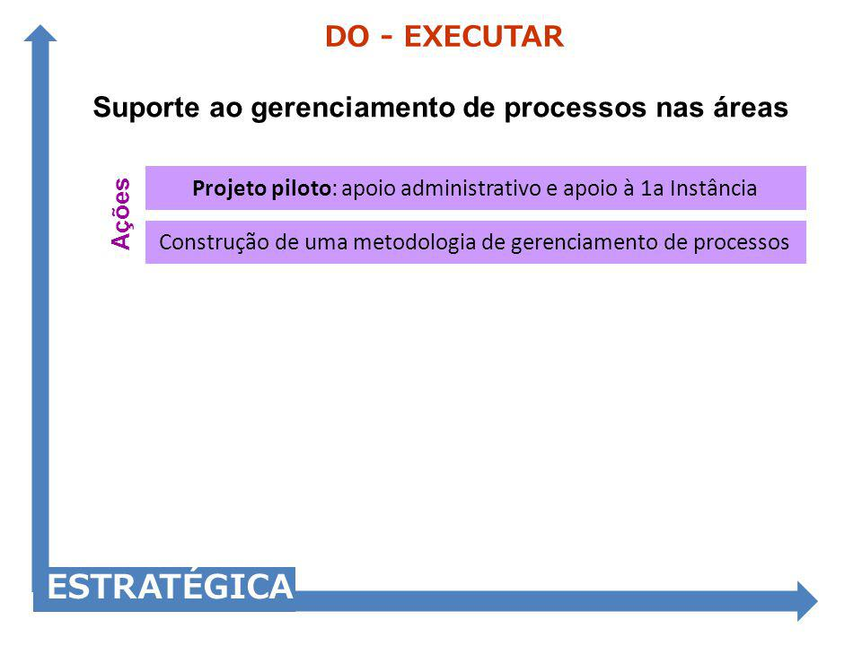 Suporte ao gerenciamento de processos nas áreas DO - EXECUTAR ESTRATÉGICA Construção de uma metodologia de gerenciamento de processos Projeto piloto: