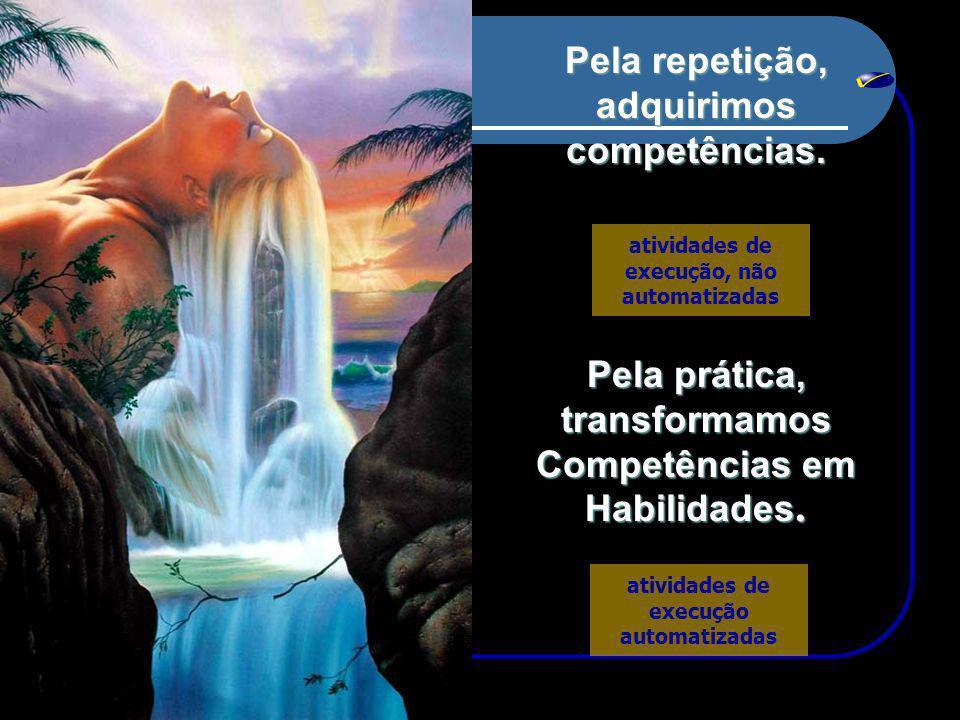 Pela repetição, adquirimos competências.Pela prática, transformamos Competências em Habilidades.