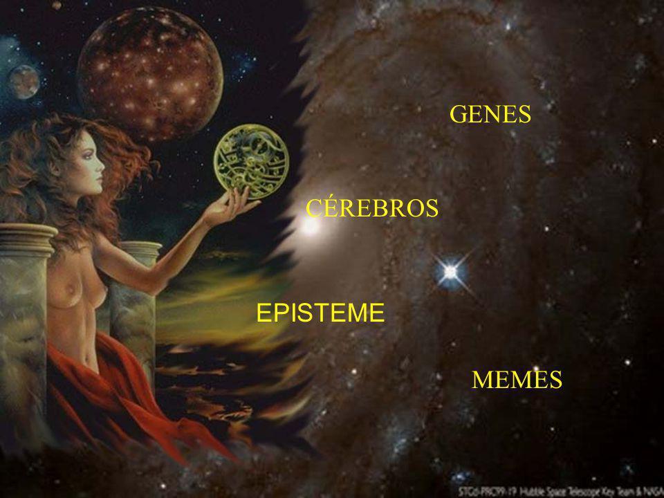 MEMES GENES CÉREBROS EPISTEME