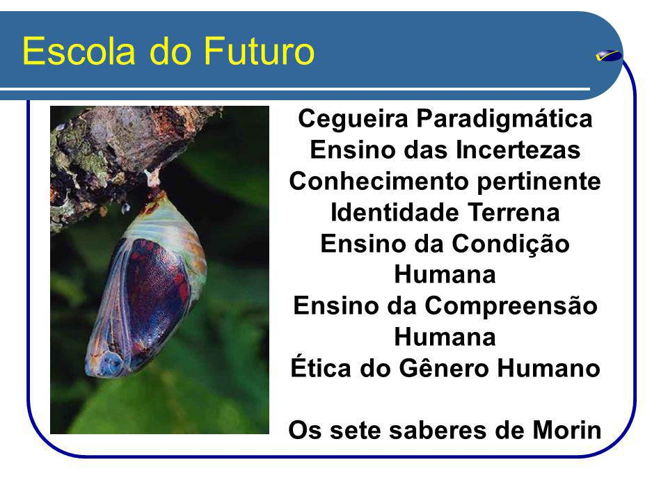 Escola do Futuro Cegueira Paradigmática Ensino das Incertezas Conhecimento pertinente Identidade Terrena Ensino da Condição Humana Ensino da Compreensão Humana Ética do Gênero Humano Os sete saberes de Morin
