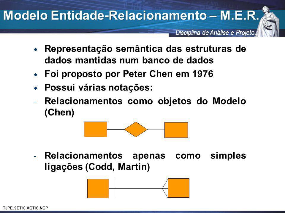 TJPE.SETIC.AGTIC.NGP Disciplina de Análise e Projeto Representação semântica das estruturas de dados mantidas num banco de dados Foi proposto por Pete