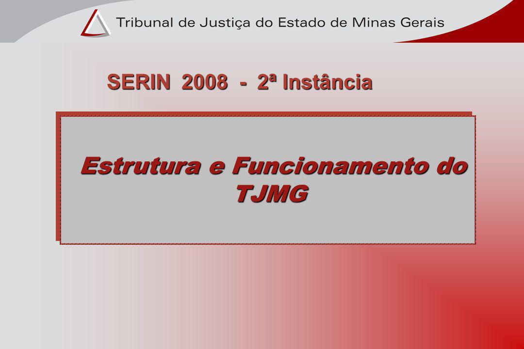 Estrutura e Funcionamento do TJMG Estrutura e Funcionamento do TJMG SERIN 2008 - 2ª Instância