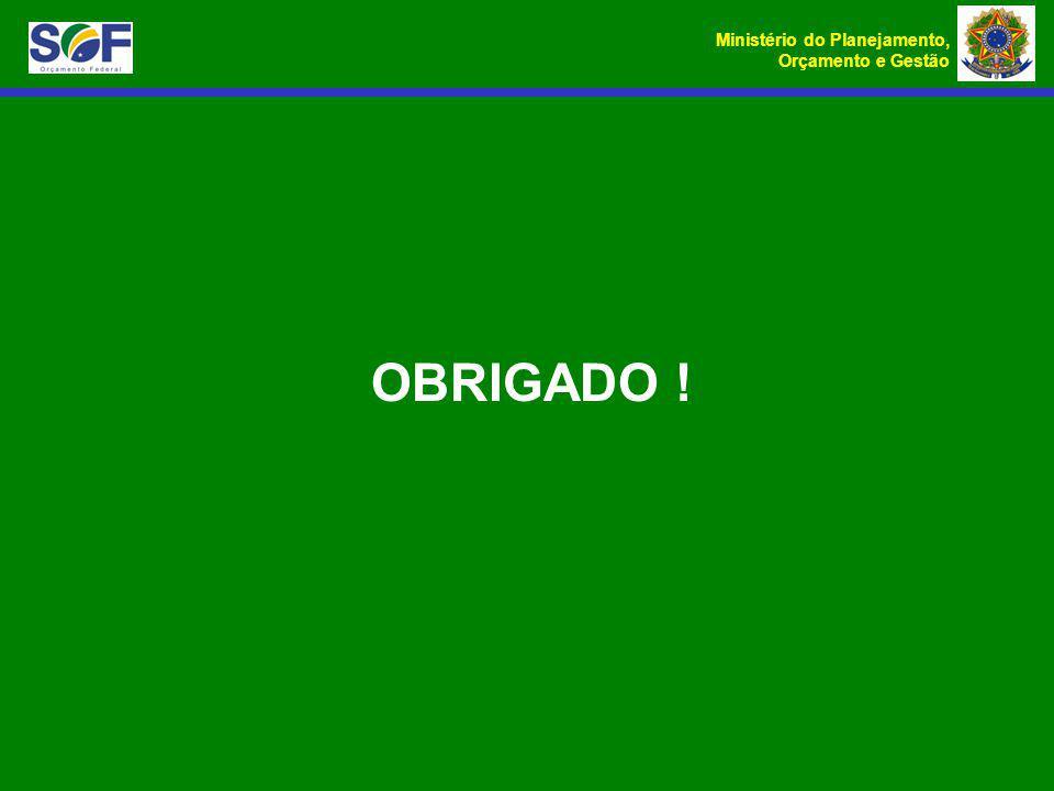 Ministério do Planejamento, Orçamento e Gestão OBRIGADO !