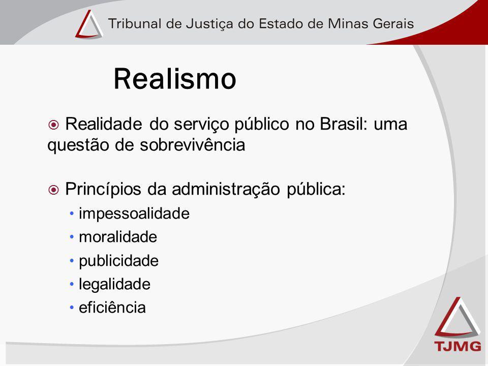 Realidade do serviço público no Brasil: uma questão de sobrevivência Princípios da administração pública: impessoalidade moralidade publicidade legalidade eficiência Realismo