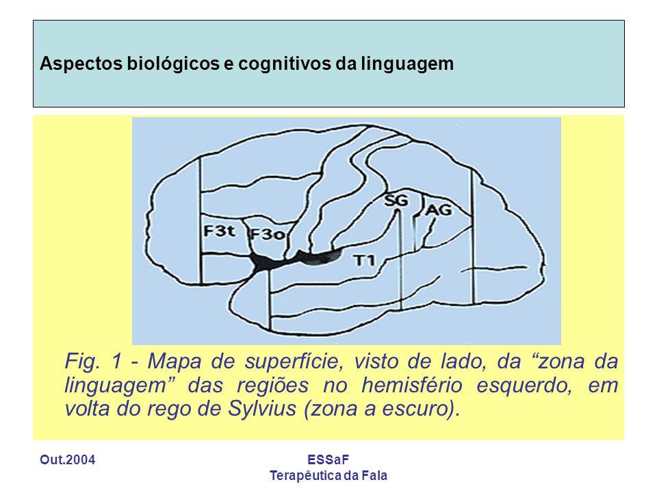 Out.2004ESSaF Terapêutica da Fala Aspectos biológicos e cognitivos da linguagem Fig. 1 - Mapa de superfície, visto de lado, da zona da linguagem das r