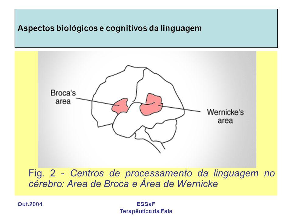 Out.2004ESSaF Terapêutica da Fala Aspectos biológicos e cognitivos da linguagem Fig. 2 - Centros de processamento da linguagem no cérebro: Area de Bro
