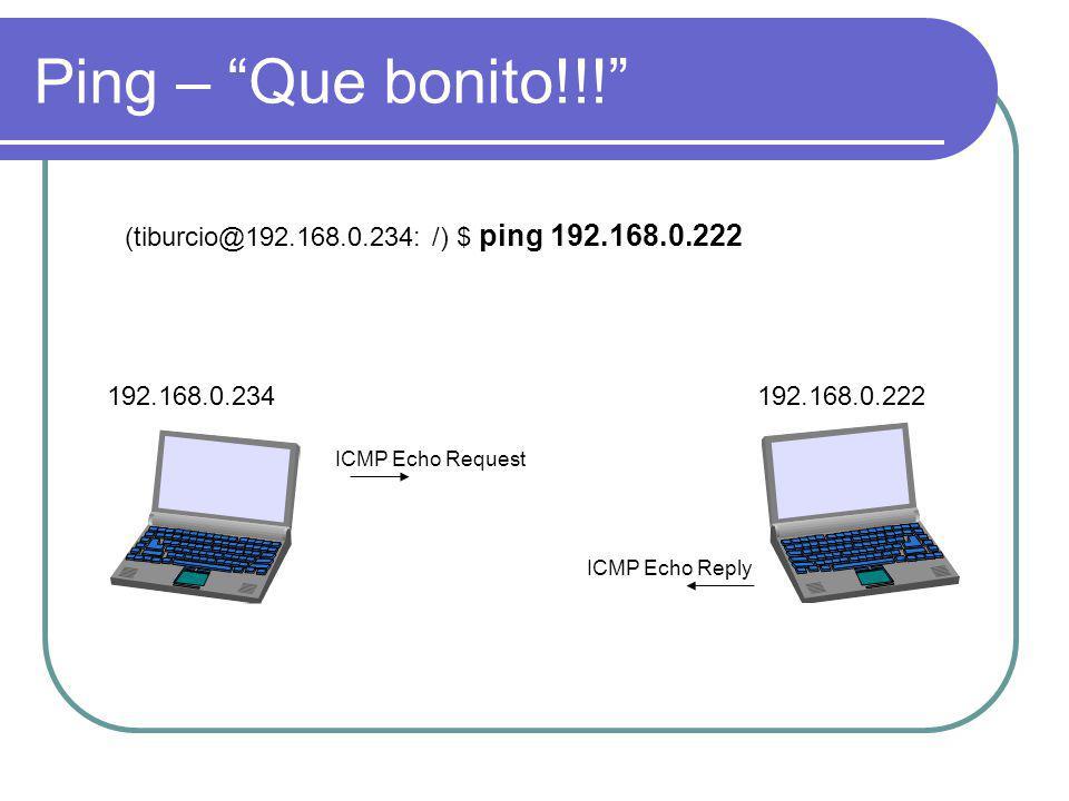 Ping – Que bonito!!! 192.168.0.234192.168.0.222 (tiburcio@192.168.0.234: /) $ ping 192.168.0.222 ICMP Echo Request ICMP Echo Reply