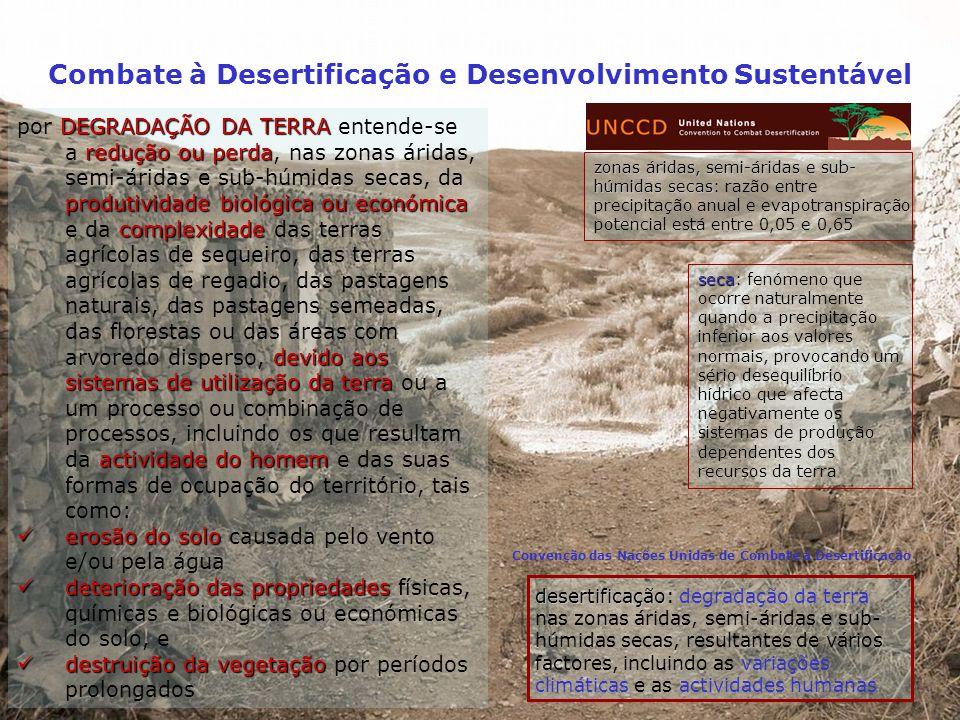 http://reports.eea.eu.int/climate_report_2_2004/en Combate à Desertificação e Desenvolvimento Sustentável CAUSAS DE INCÊNDIOS