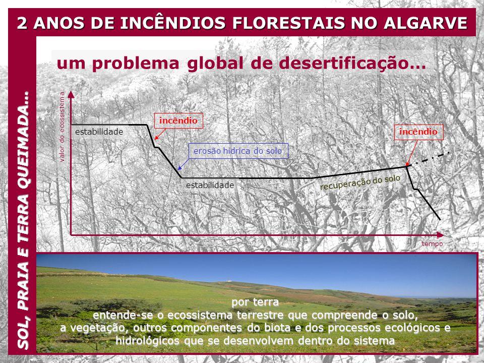 2 ANOS DE INCÊNDIOS FLORESTAIS NO ALGARVE SOL, PRAIA E TERRA QUEIMADA… um problema global de desertificação… tempo valor do ecossistema estabilidade i